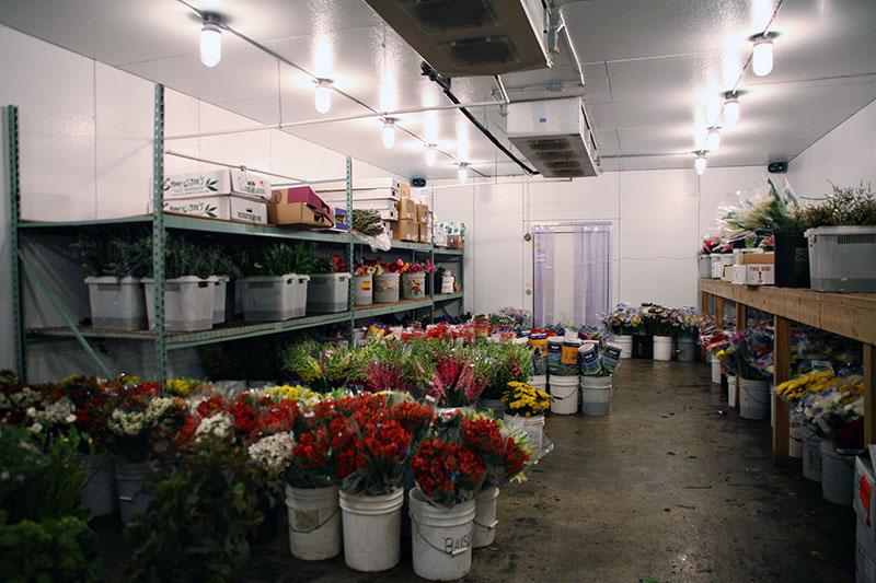 Floral Walk-in