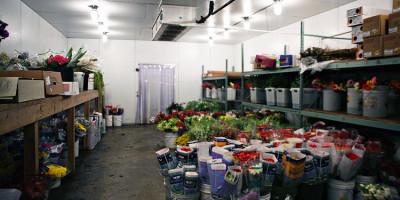 flower-refrigerator